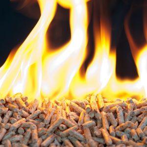 flamme-bois-granule